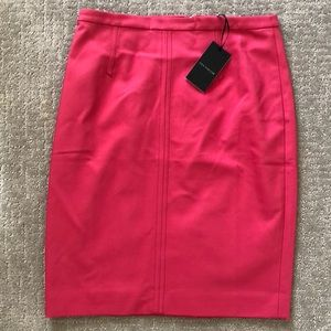 Pink Ann Taylor Pencil Skirt